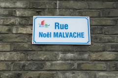 ruenoelmalvache